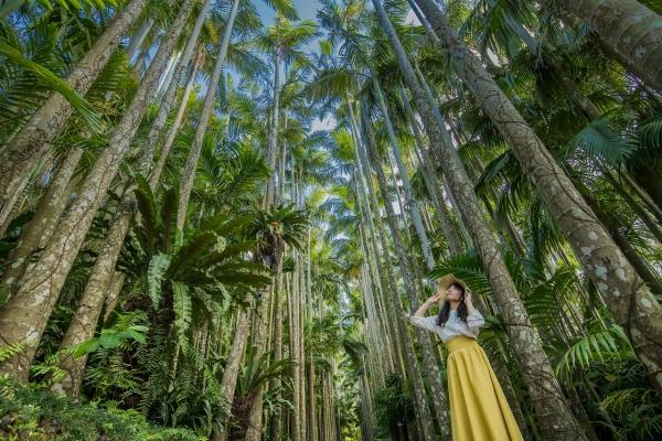 約1,300種類の植物に囲まれて、南国気分を味わおう!【東南植物楽園】