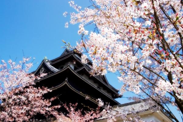「山と海と湖の町、歴史ある松江の観光スポット」