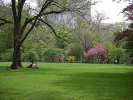 園内風景 春