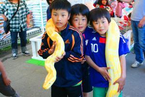 ヘビの首巻