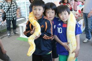 大蛇の首巻